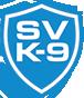 Stealth Vigilance Logo